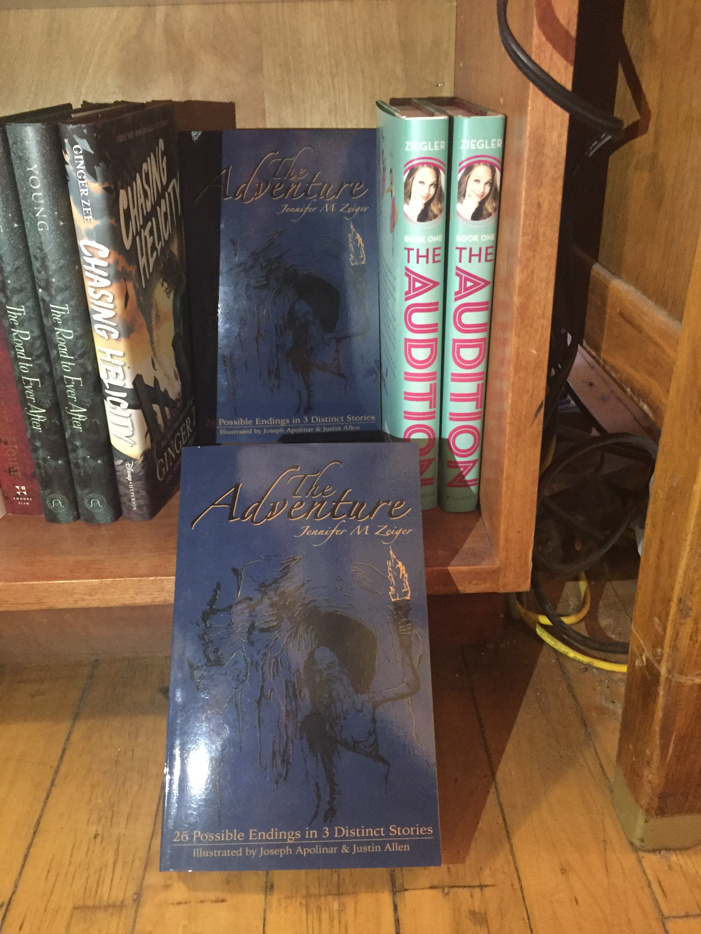 The Adventure in Auntie's Bookstore